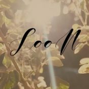 LOON Ambient Music